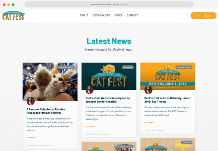 CatFest Safari News